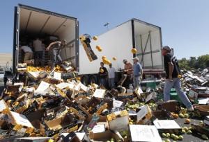 AGRICULTORES FRANCESES CONTRA LA ENTRADA DE FRUTA Y VERDURA ESPAÑOLA